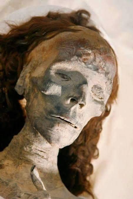 موكب المومياوات الملكية.. شعر مومياء الملكة تي يثير جدلًا (صور)